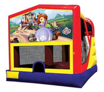 4n1 Sofia The First Bounce House Combo