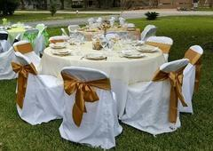Table Cloths Linens and Chair Covers