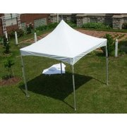 New Tent 10 x 10 High Peak Frame