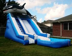 020 Whale Water Slide with pool
