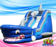 Inflatable Water Slides