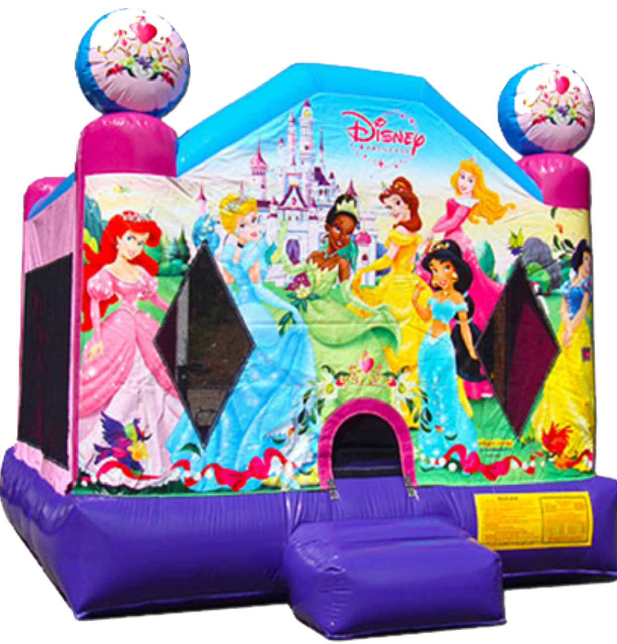 Disney Princess Bounce House rentals Murfreesboro