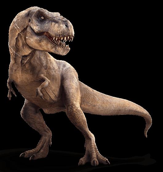 Dinosaur jumper Nashville | Jumping Hearts Party Rentals