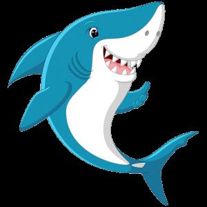 Shark water slide Nashville | Jumping Hearts Party Rentals