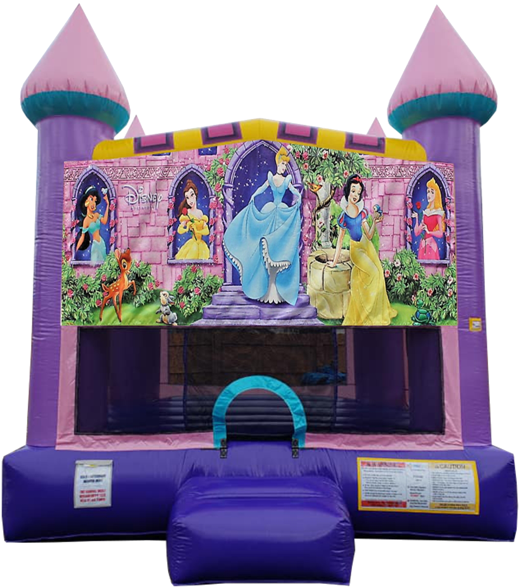 Disney Princess Bouncy House Nashville