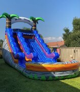 15' Wild Thing Dual Lane Slide
