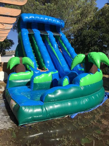 20 Ft Tropical Dual Ln Curvy Water Slide (Item 301)