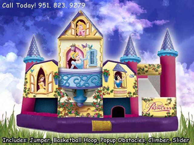 5N1 Deluxe Disney Princess (Item 555)