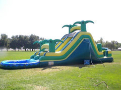 20 Ft Safari Dual Ln Back Load Water Slide (Item 324)