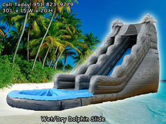 20 Ft Grey Dolphin Water Slide (Item 306)