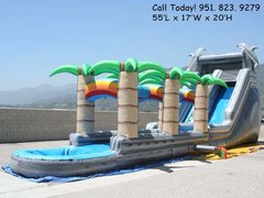 Grey Dolphin Supreme Water Slide (Item 307)