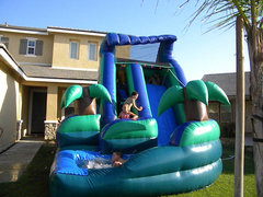 16 Ft Tropical Curvy Water Slide (Item 325)