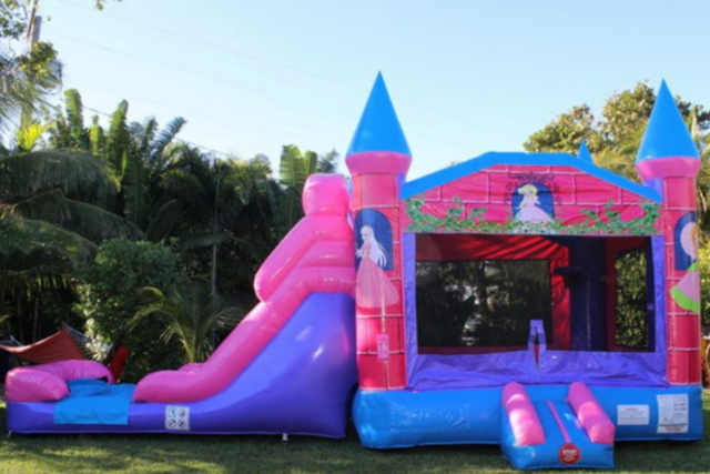 Princess Bounce House Slide Combo (wet)