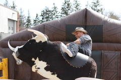 Mechanical Bull Rentals & Mechanical Shark