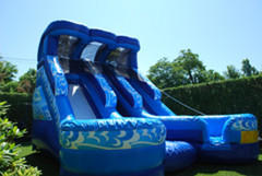(10)  Double Screamer Water slide #WS20