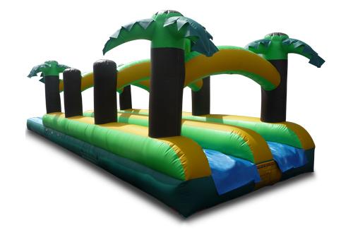 Suwanee tropical themed water slide rentals