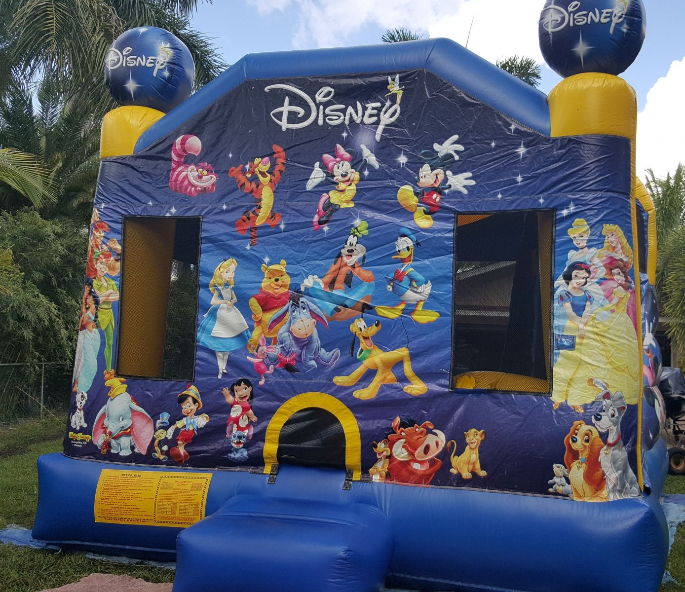Disney character bounce house