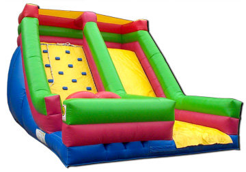 20' High Inflatable Pool Water Slide (JSWS11)