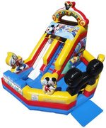 13' High Mickey Park Water Slide with Pool (SW131601)