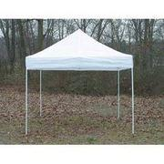 Tents - 10 x 10 White Truss