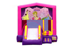 Pink And Purple Princess Bounce House With Slide