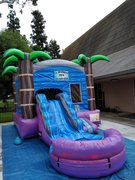 Tropical Combo Water Slide with pool