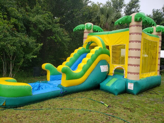 Tropical Palm Tree Inflatable Combo (Wet & Dry)