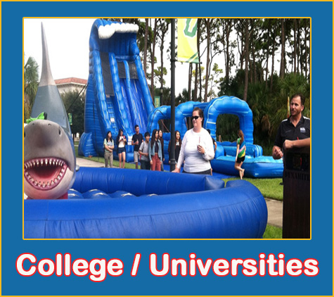 college and universities