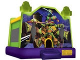 Dallas Bounce House Rentals