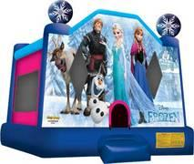 Backyard Frozen Bounce House