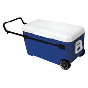 Oversized Coolers