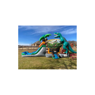 Bounce House with Slide Rentals Hinsdale IL