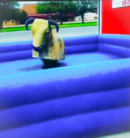 Houston Mechanical Bull Rentals!
