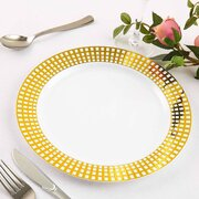 Disposable Plastic Dinner Plates -10 units