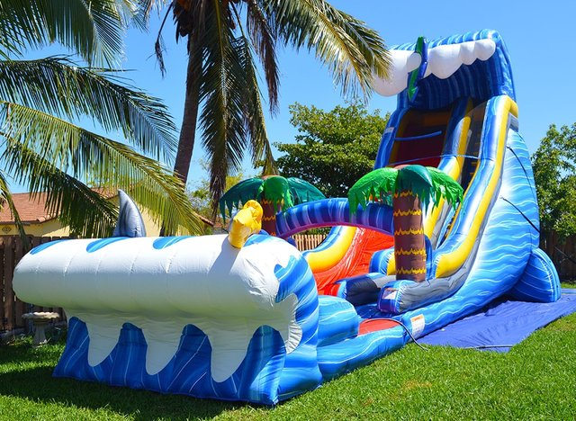 24ft Wild Waves Waterslide