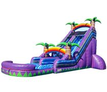 Purple Crush Slide