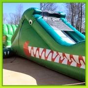 Alligator Slide