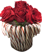 Candy Canes & Roses