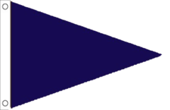 Blue Triangle Flag