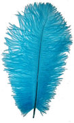 Blue Ostrich Feather