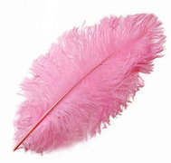 Light Pink Ostrich Feather