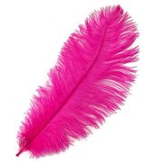 Dark Pink Ostrich Feather