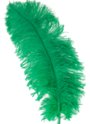 Green Ostrich Feather