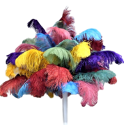Multicolored Feather Centerpiece