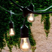 Outdoor Tent Lights (50)ft