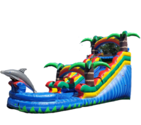 S0516 FT Dolphin Splash Water Slide with XL Pool ( Family Friendly ) Best for ages 5+ Space Needed 33'L x 18'W x 19'H