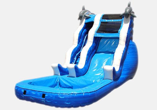 Dolphin Rush Wave Water Slide Rental Chicago IL