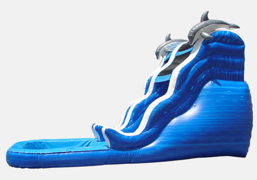 Water Slide Rentals in Chicago Dolphin Rush Wave Waterslide