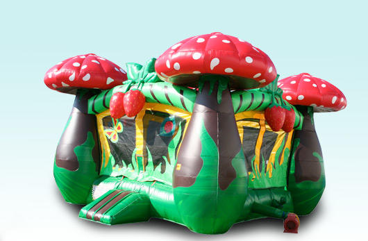 Chicago Strawberry Mushroom Bounce House Moonwalk Inflatable Bouncy Castle Rental in Chicago IL