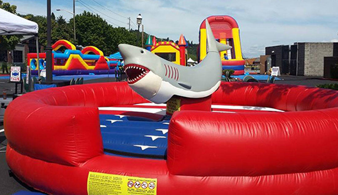 Mechanical Shark Rental, Chicago IL.  Great for Luau & Tropical parties.